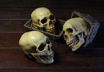 Three skulls and basket in dim light / Still life image