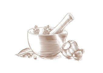 Mortar bowl and pestle with spice, herb and garlic