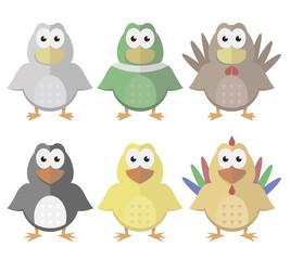 Birds from the farm