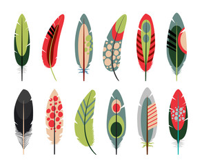 Colorful flat feathers icons on white background. Vector illustration