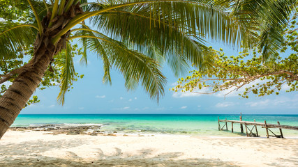 Foto auf Leinwand Tropical strand Beautiful exotic beach with coconut tree, Located Koh Kood Island, Thailand