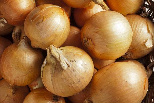 fresh, whole, yellow onions