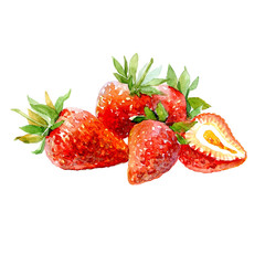 Watercolor strawberry and sliced strawberries isolated on a white background illustration.
