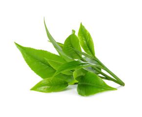 green tea leaf isolate on white background