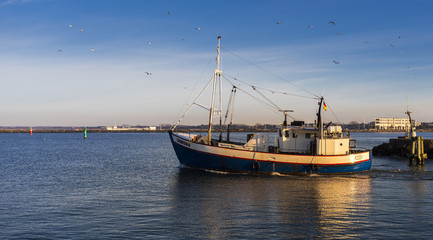Fischkutter in Warnemünde