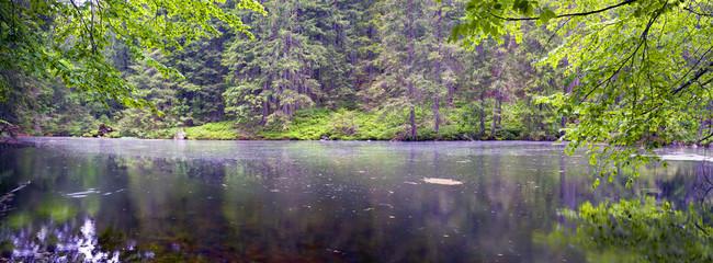 Mountain Lake in the wild taiga