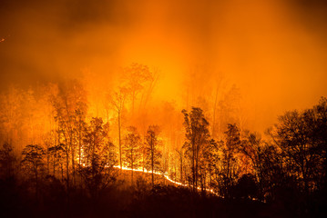 Wildfire, Appalachian Mountains