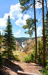 Beautiful Lower Falls. The Grand Canyon of the Yellowstone National Park, Wyoming, USA. Yellowstone River flowing in the canyon.