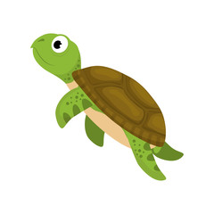 Marine turtle cartoon icon vector illustration graphic design