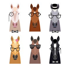 Vector hipster horse head in glasses ,bow. Flat cartoon style