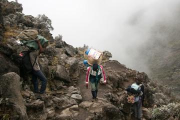 Mt Kilimanjaro, Tanzania, Africa