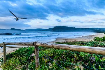 Early morning beach scenery