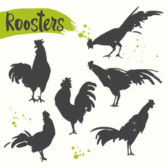 Silhouette of the cock in different poses.. Sketch style. Vector illustration with black and white roosters. Brush drawings.