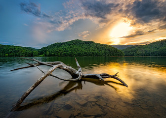 Driftwood and sunset, Appalachian Mountains Wall mural