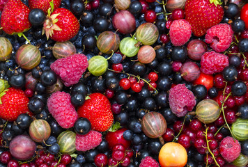 Berry background with fresh raspberries, blueberries, currants, strawberries, cherries,
