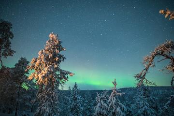 Korouoma nature reserve, aurora borealis glow in sky, Posio, Finland
