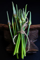 Bunch of garlic scapes