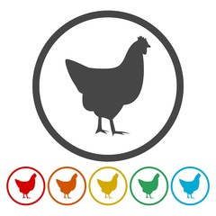 Vector chicken silhouette icons set