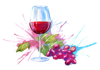 Glass cup of a red wine and grape.Drink painting.Watercolor hand drawn illustration.
