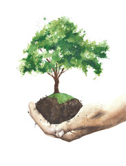 Tree in hands watercolor painting illustration isolated on white background card