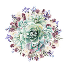 Beautiful watercolor bouquet with succulents and lavender. Blackberries. Illustrations.