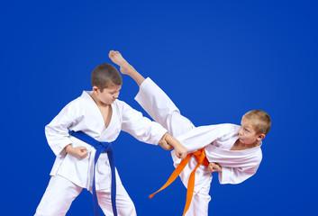 Two karateka are training karate blows