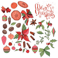 Set with isolated Christmas objects - flowers, spice,fruits and decoration. Vector, hand drawn.  Merry Christmas callighraphy phrase. Red,green, black and brawn.