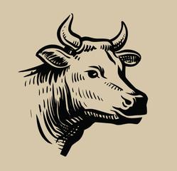 cow black head