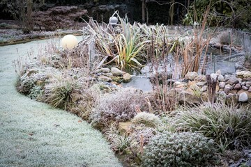 Frost im Garten mit Teich