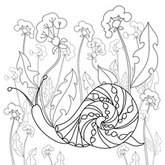 Snail on a field of dandelions. Black and white illustration.