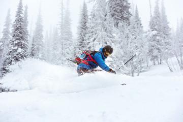 Skier off-piste freeride skiing forest