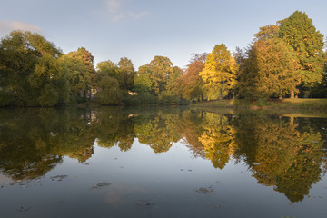 Autumn colored trees reflecting in park lake giving beautiful scenery