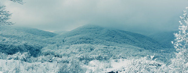 panoramic winter landscape, the snow-covered forest on the hills in the early morning. tinted photo