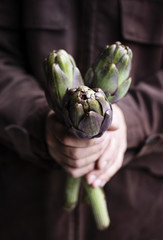 Man's hands holding artichokes