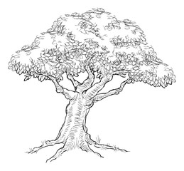 Woodcut sketch Style Tree