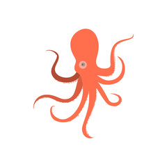 Cartoon octopus monster. Illustration of octopus baby. Octopus cartoon flat style. Cute octopus on white background. Cartoon octopus animal monstrous underwater. Tropical sea life animal octopus sign