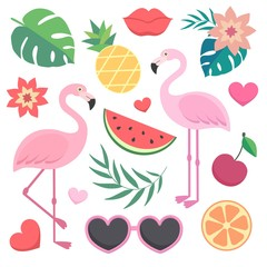 Vector set of tropical illustrations. Palm leaves, flamingos, sunglasses, watermelon, hearts, lips.
