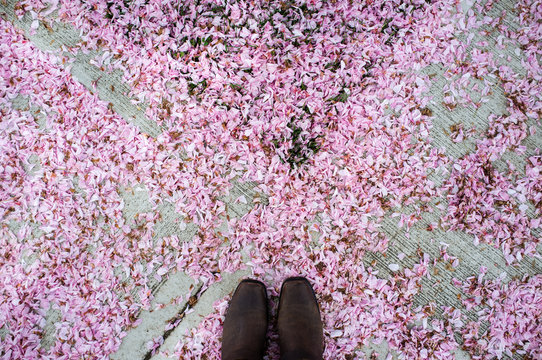 Point of view image of man with feet on blossom