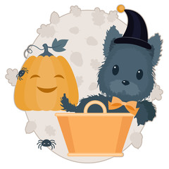 Halloween vector illustration. Scotch terrier in witch hat in ba