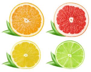 Collection of citrus slices. Orange, grapefruit, lemon, lime fruits isolated on white