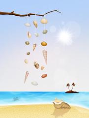 rattles shells