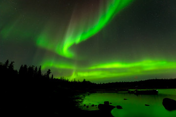 Dancing Lights - Colorful northern lights drop down from starry sky over evergreen forest surrounding a lake.
