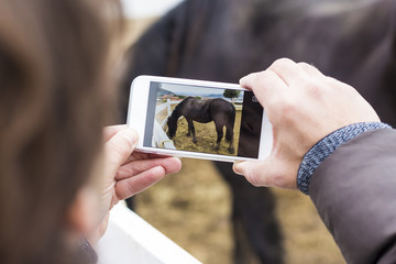 Man taking picture of a horse