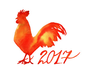 Watercolor new year rooster, cock isolated on white background