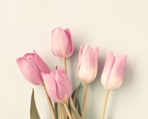 Vintage pink tulips over beige background