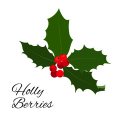 Christmas holly berries icon. Vector illustration