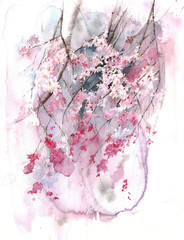 Blooming tree spring blossom sakura watercolor painting illustration