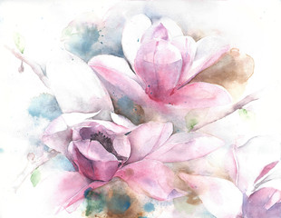 Magnolia flower tree tulip magnolia watercolor painting illustration greeting card