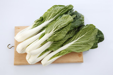 pak choy or sawi putih