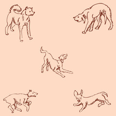 Dogs. Sketch pencil. Drawing by hand. Vintage colors. Vector